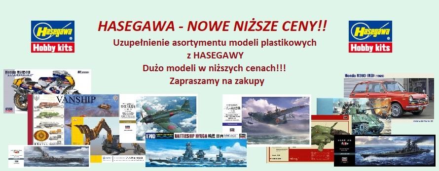 Hasegawa 022018