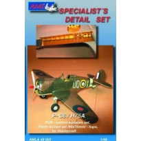 Curtiss  H75A (PUR control surfaces) (1:48)