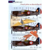 French pilots on Hawk Part II (1:48)
