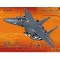 F-15E Striking Eagles - Limited Edition (1:48)