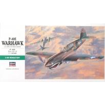 P-40E Warhawk (1:48)