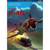 Curtiss P-40 vol. III