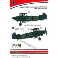 Arado Ar-66c, Geschwaderstab/NSG.r.3 Oblt. Werner Doye (1:48)