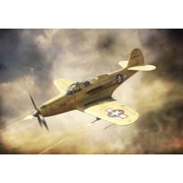 P-39Q Airacobra (1:144)