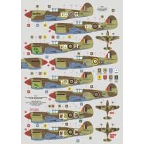 SAAF Kittyhawks (1:72)