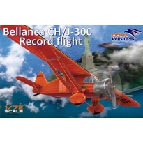 Bellanca CH/J-300 Record flight (1:72)
