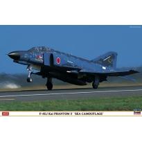 "F-4EJ Kai Phantom II ""Sea Camouflage"" - Limited Edition (1:48)"