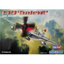 """P-47D """"Thunderbolt"""" Easy Assembly (1:72)"""