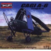 CAGI A-6 (1:72)