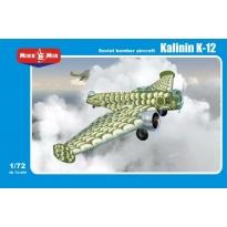 Soviet  bomber aircraft Kalinin K-12  (1:72)