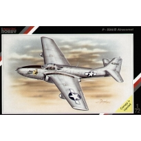"Bell P-59A/B ""Airacomet"" (1:72)"