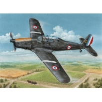 "Arado Ar 96B ""Captured & Post War"" (1:72)"
