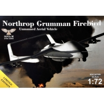 "Northrop Grumman Firebird - Unmanned Aerial Vehicle Concept 4 ""Air-to-ground"" missiles+container (1:72)"