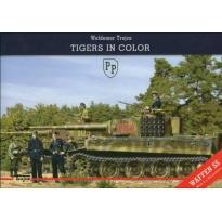 Tiger's in Color