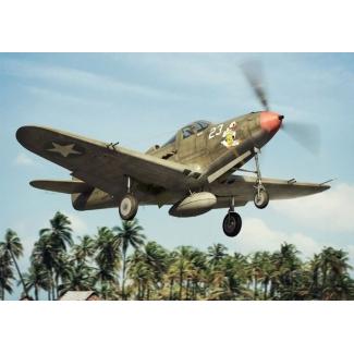 P-39 D-F-K Airacobra (1:144)