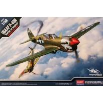"USAAF P-40N ""Battle of Imphal"" (1:48)"